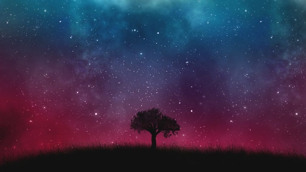 Universe-Tree